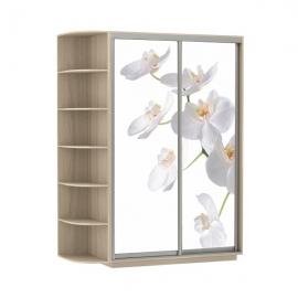 Шкаф-купе Дуо-двухдверный Орхидея Ясень шимо светлый