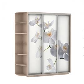 Шкаф-купе Трио-трехдверный Орхидея Дуб молочный